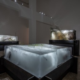 Theo-Mass Lexileictous | Ice Age, installation view