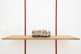 Peter Eramian | Song she sang to me, Song she brang to me, white cement, earth, rocks, found shelf & rails, 2019